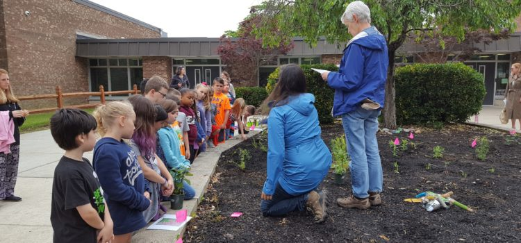 Native Schoolyard Garden Program