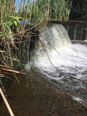 Bellmore Creek